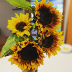 Locally grown flowers and handmade bouquets in Kingman county, Kansas.