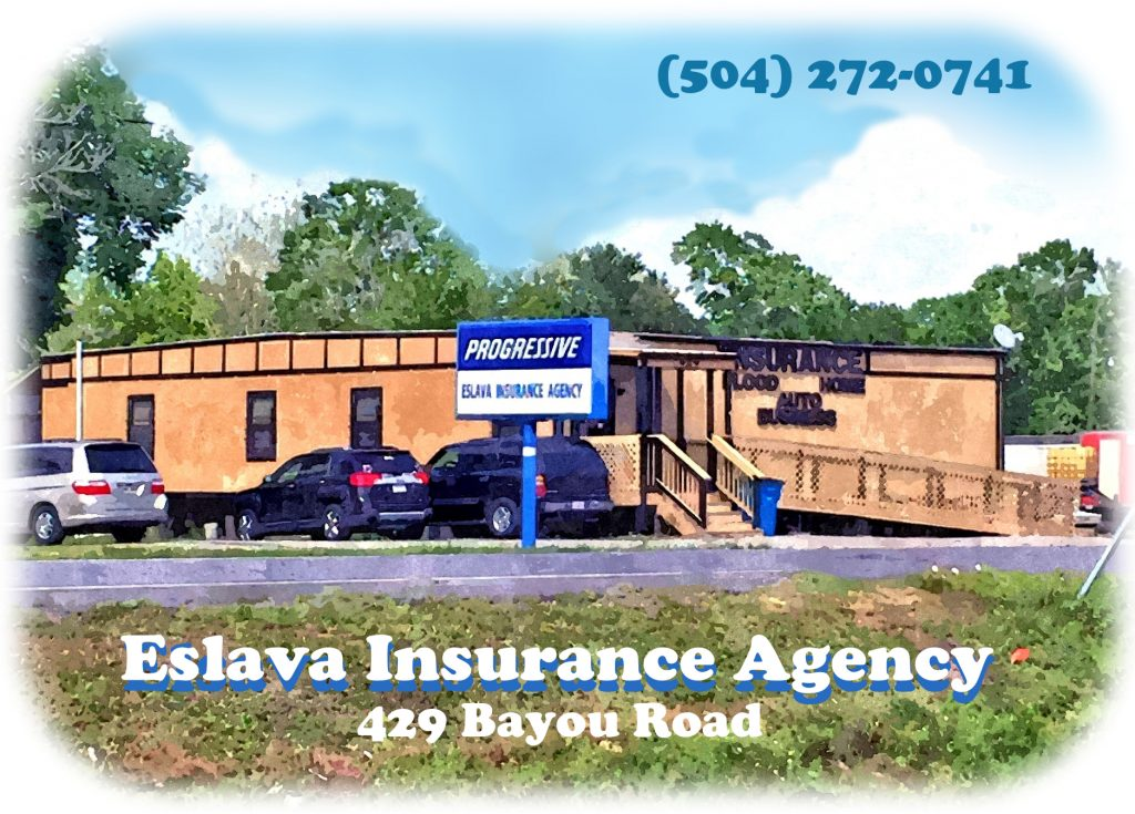 ElSavaInsuranceMicrositeOval-1024x735