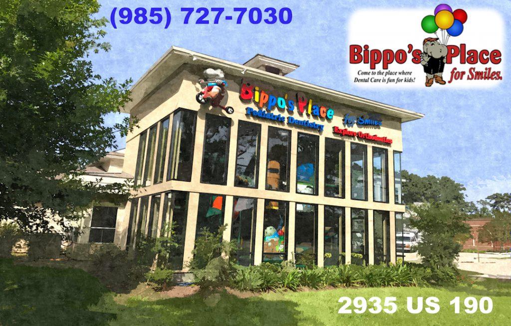 BipposPlaceMandevilleMicrosite-1024x653