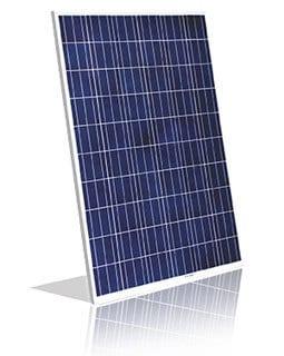 Vikram Solar Panel 250w 150w 100w Solar Pv Module
