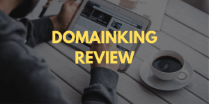 DomainKing Review