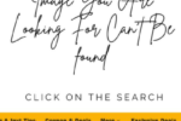 RCA 24 inch TV