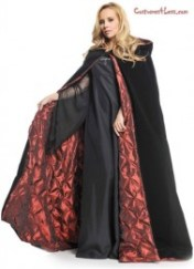 Costume Outfitters -Costumes4Less -Witch