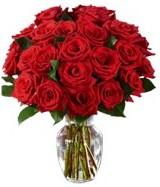 Black Friday, Cyber Monday -Two Dozen Red Roses -Ginger Vase