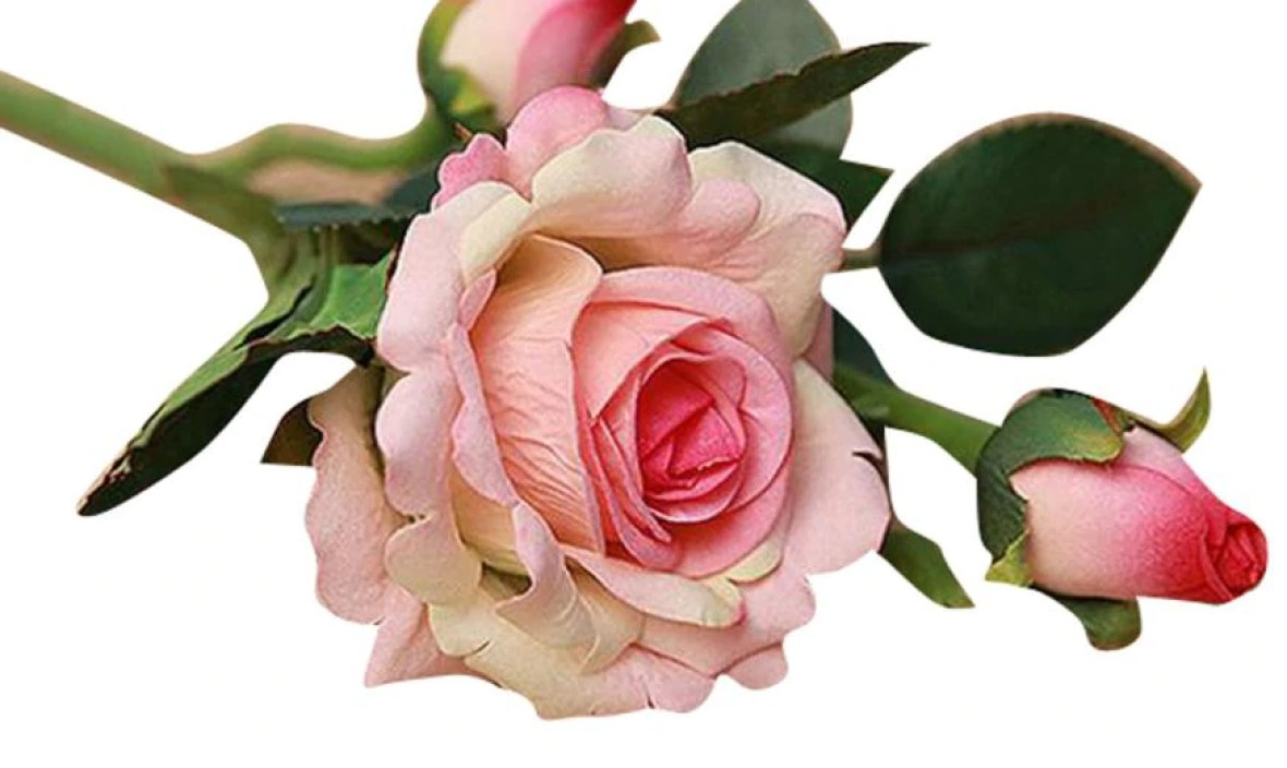 the best seller fashion  5pcs Real Latex Touch Rose Flowers For wedding And Home Design Bouquet Decor  17a8