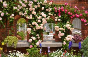 Roses Can Be Just A Little More Work. Photo via HostelGardens.net.
