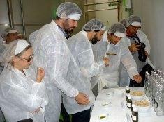 oliveira-da-serra-mostra-como-se-faz-azeite-na-herdade-do-marmelo_4