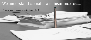 Image of Insurance Policy and Vape Pen