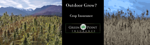 Outdoor cannabis crop insurance