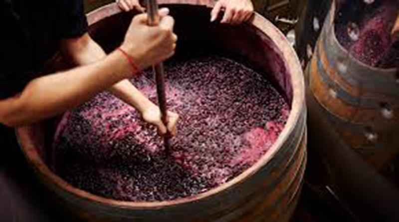Mua rượu vang F tại Bình Thuận giá rẻ