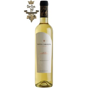 Rượu Vang Ngọt Late Harvest Sauvignon Blanc khi nhìn sẽ thấy có màu vàng tươi sáng. Rượu mang hương thơm tao nhã của đào trắng, cam quýt và cây kim ngân hoa