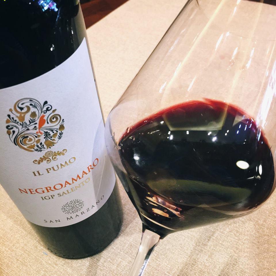 Bán rượu vang ý IL Pumo Negroamaro tại Hà Nội giá tốt nhất