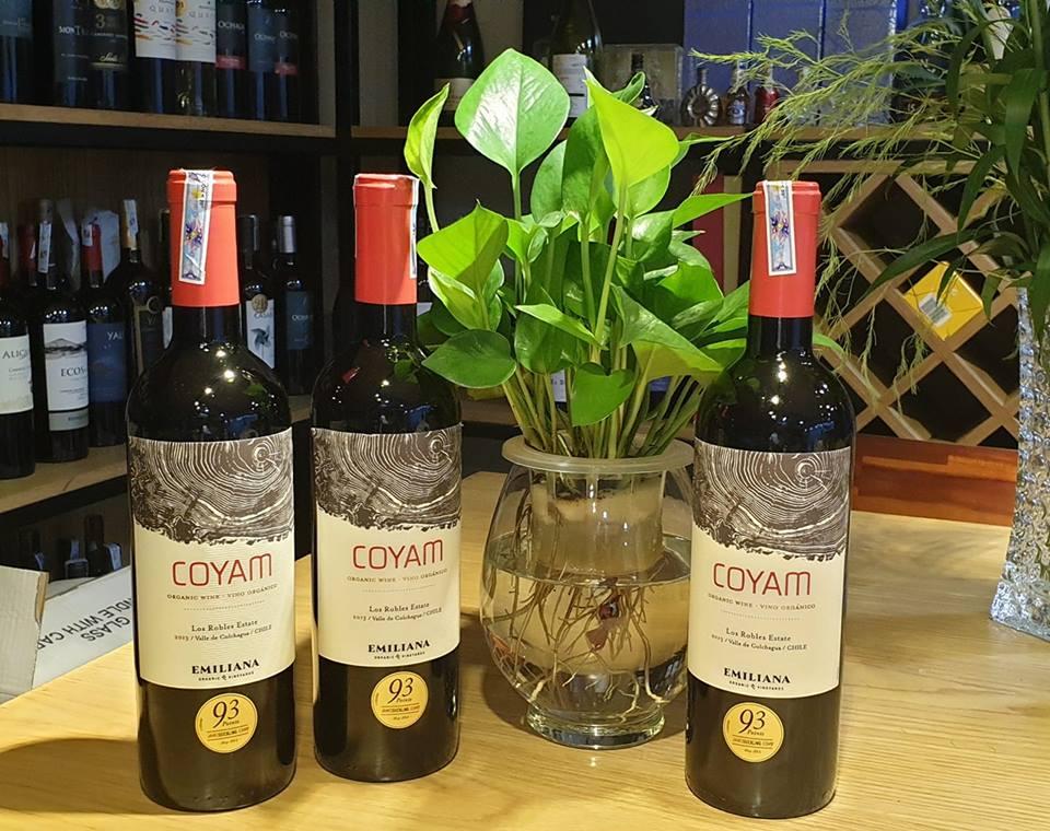 Phân phối rượu vang Chile Emiliana Coyam tại Đồng Nai giá tốt nhất