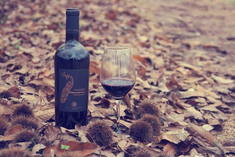 Rượu Vang Ý Vindoro tại Phú Quốc giá tốt - Shop rượu 247