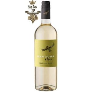Mancura Etnia Sauvignon Blanc có mầu vàng rơm ánh xanh. Hương thơm của các loại trái cây vùng nhiệt đới như anh đào, mận kết hợp với hương hoa trắng