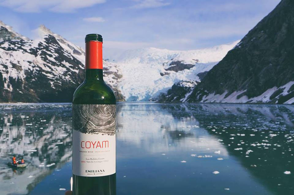 Rượu Vang Chile COYAM Emiliana có mầu đỏ tím. Hương thơm thanh lịch và phức tạp của các loại trái cây anh đào
