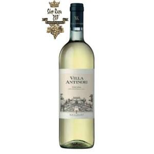 Rượu vang Ý Antinori Villa Antinori Bianco Toscana IGT có màu sắc tươi sáng, có vẻ đơn giản nhưng không kém phần thú vị.