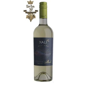 Vang Chile Trắng Yali Reserva Sauvignon Blanc có mầu vàng xanhnhạt. Hương thơm của cam quýt và các loại trái cây nhiệt đới như bưởi, dứa, lê