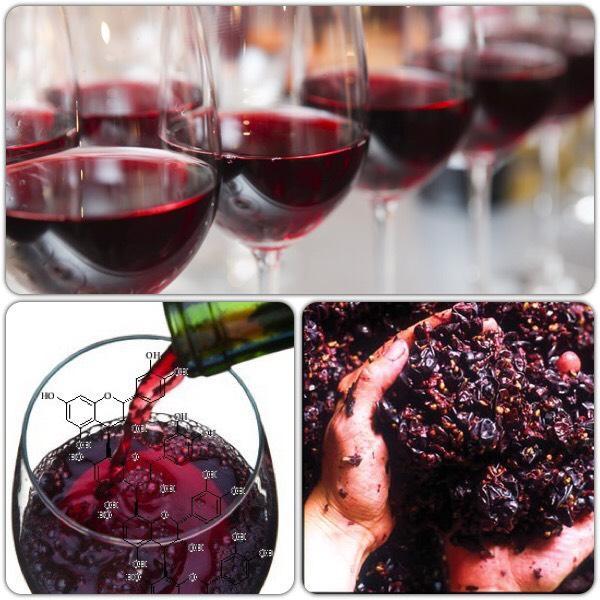 Về cơ bản, tannin là sức mạnh của rượu vang. Nó thường chiếm ưu thế hơn trong các loại rượu vang đỏ trẻ hơn