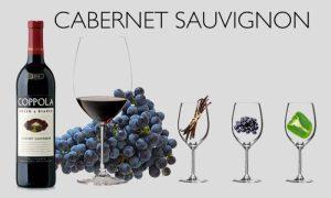 Cabernet là một loại rượu vang đỏ toàn thân, có độ chua vừa phải và có khả năng lão hóa rất tốt