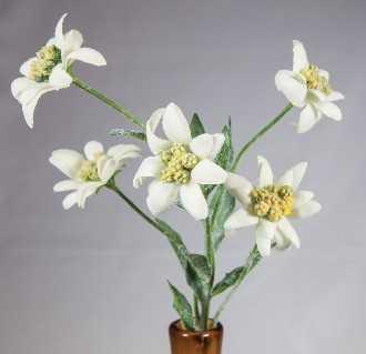 artificial edelweiss flowers