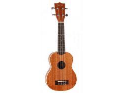 4CE2C282 C777 4FE8 88B3 113C27E8F0AF 16140 000010F0A6723DCD - Bedste ukulele til børn