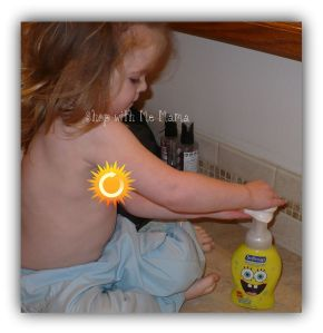 Softsoap Liquid Handsoap with APHA Hand Washing Timer Review