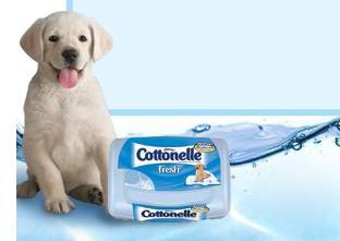 Cottonelle Fresh Flushable Moist Wipes (I love 'em!)