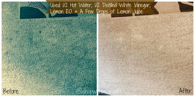 Clean Your Carpets With These 4 Simple & Safe Ingredients