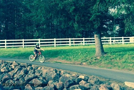 "Schwinn Scour 20"" Kid's Bike"