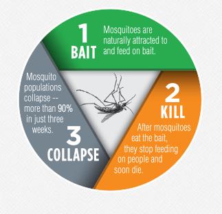 Bait & Kill