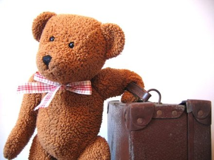 Teddy Bear Traveling with a suitcase