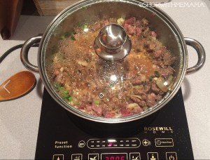 Rosewill Induction Cooker Cook Top For Easy Cooking!