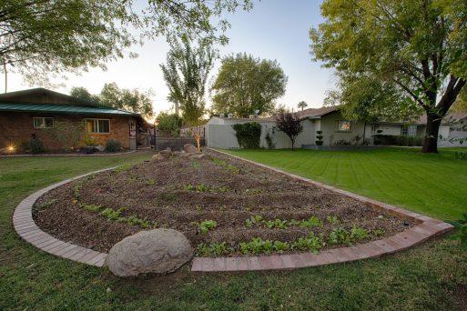 How To Grow An Edible Garden