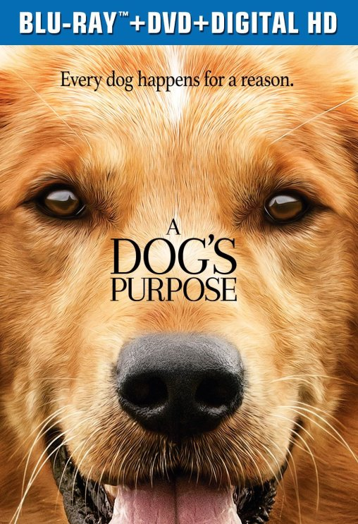 A Dog's Purpose Is An Adorable And Heartwarming Film!