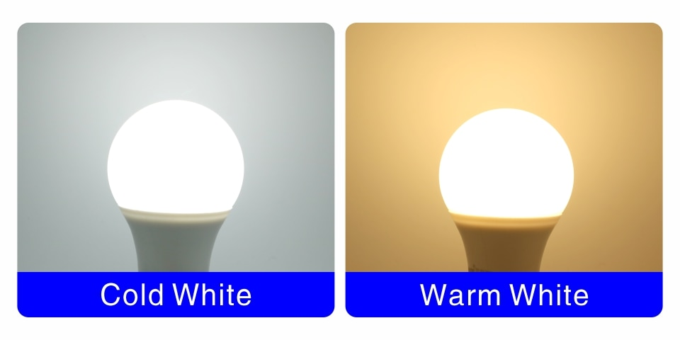 Cold / Warm White LED Bulb