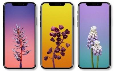 iPhone X : une occasion manquée pour l'USB-C