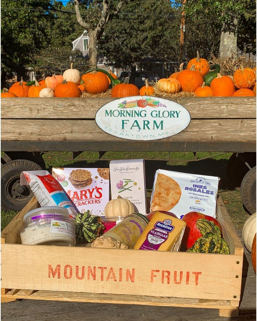 Morning Glory Farm Marthas Vineyard-7