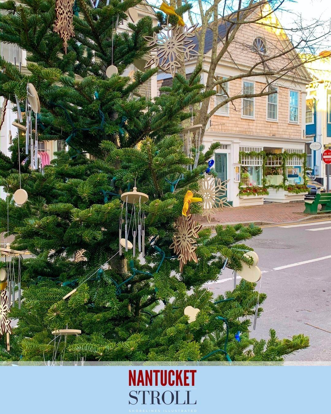 Nantucket Christmas Stroll-61