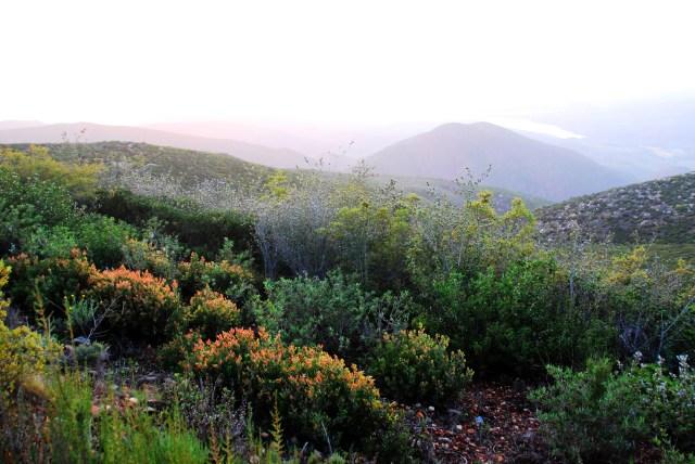 Otay Mountain (1)_tonemapped