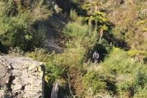 riding round Taupo