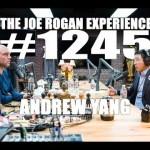 Joe Rogan Experience #1245 – Andrew Yang (Joe Rogan Experience #1245 – Andrew Yang)