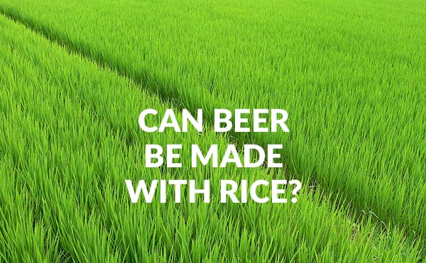 Can Beer Be Made With Rice?