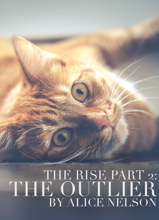 The Rise Part 2: The Outlier