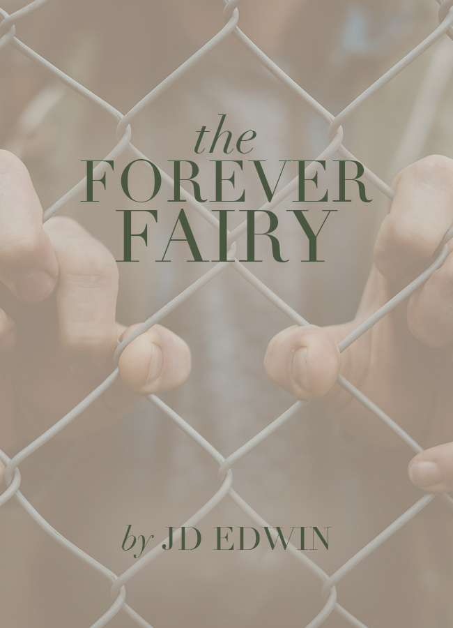 The Forever Fairy