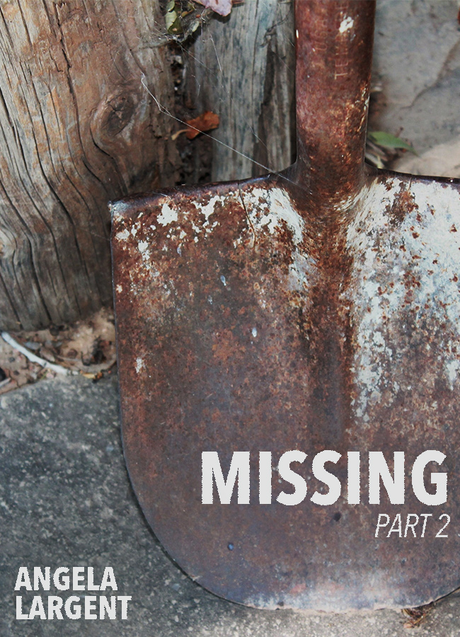 Missing, part 2