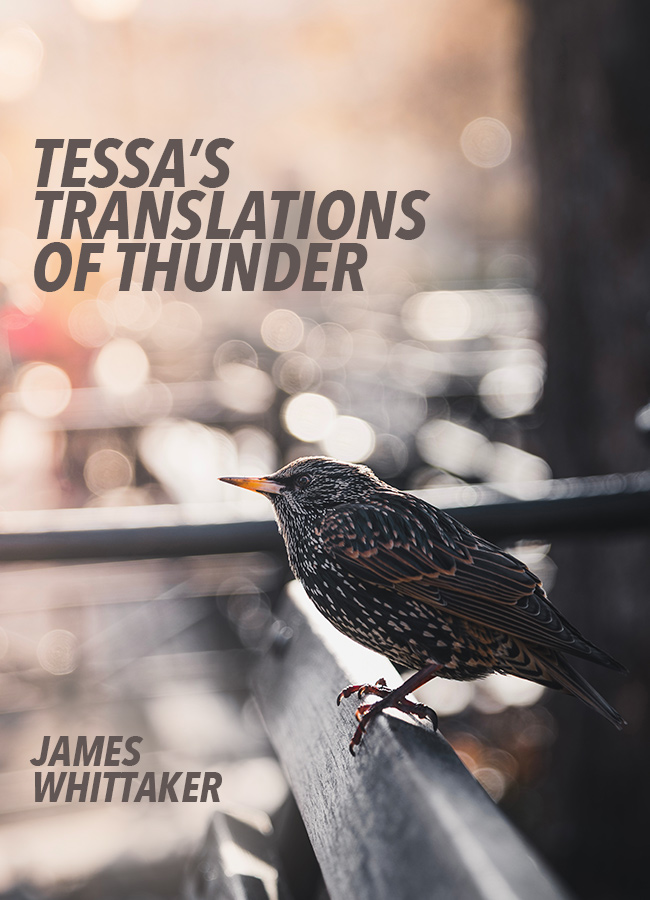 Tessa's Translations of Thunder