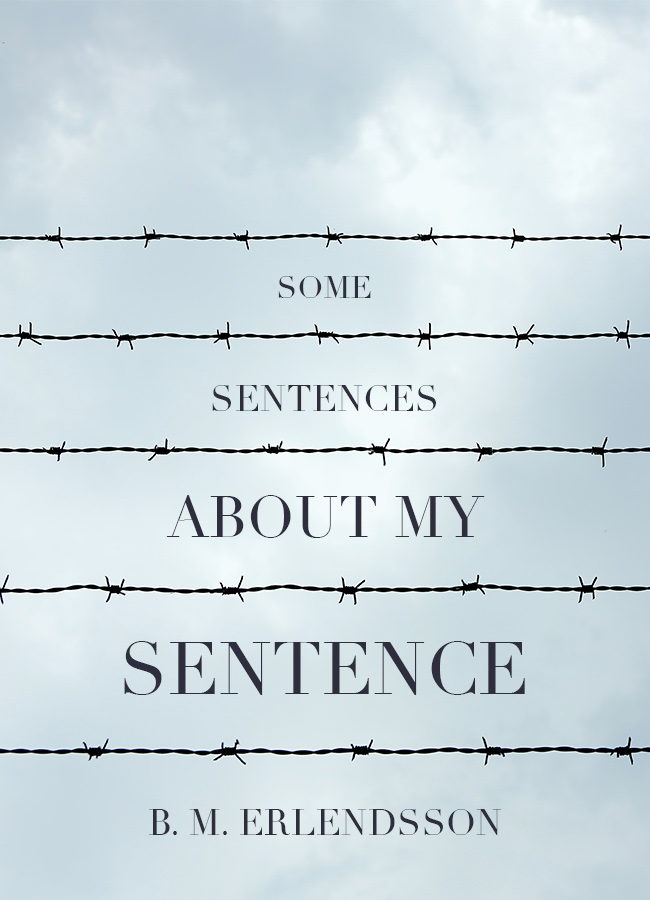 Some Sentences About My Sentence