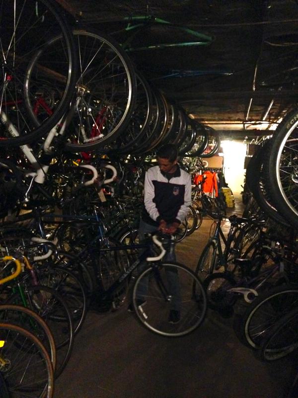 bicycle basement - shorts and longs - julie rybarczyk