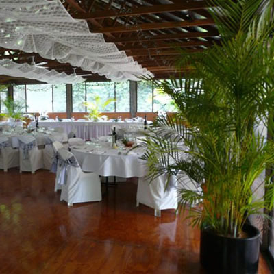 Wedding Events  Our Short Term Indoor Plant Hire Specialty